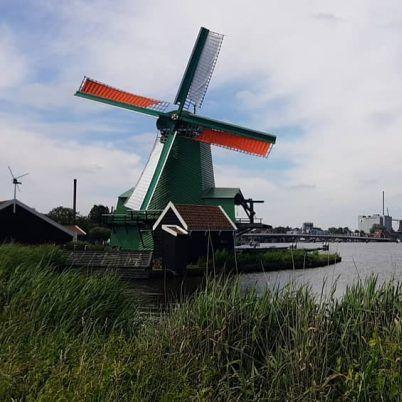 Volendam Zaanse Schans cheese tour